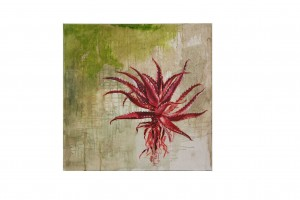 aloe oil on canvas abstract cleared art